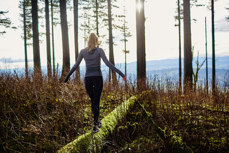 Wat Ziet U De Bomen Het Bos Of Het Beste Ict Landschap